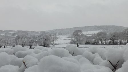 Wraxall has been covered in snow. Picture submitted by Times reader Jack Wright