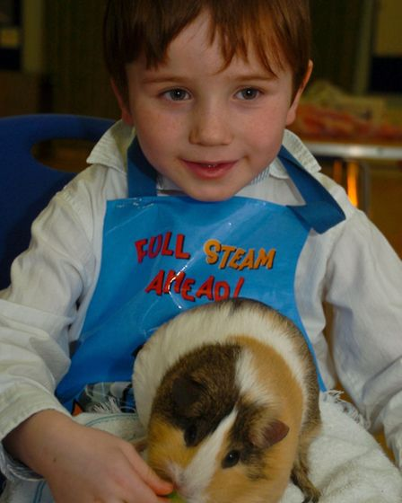 Children enjoying the animals which has organised by parents for their latest project.
