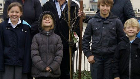 Trees donated to Portishead Primary School by the John Lewis Partnership.
