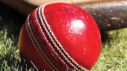 cricket - a generic picture