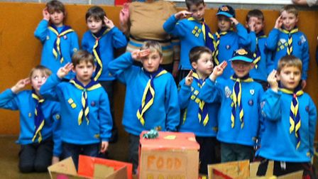 2nd-Clevedon-Beavers-with-Sue-