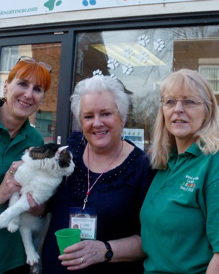 opening new charity shop Bristol and Wales Cat Rescue, High Street Nailsea Carol Hounslow, Tracey B