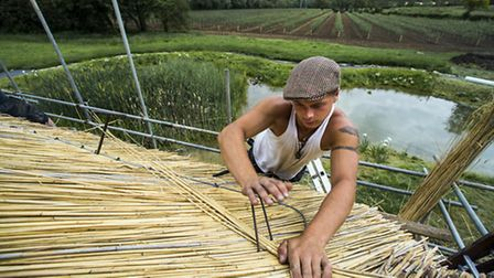 Thatchers have been busy preparing the new roof at Thatchers