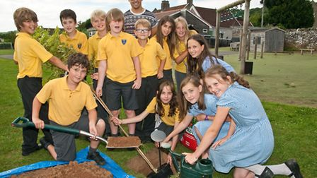 Tree being planted by year six school leavers.