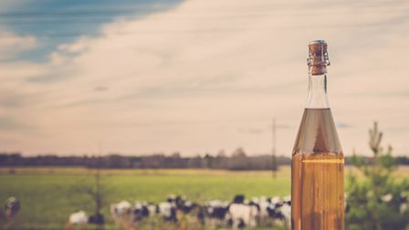 Somerset has a rich history of cider production. (Getty Images/iStockphoto)