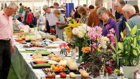 Clevedon Flower Show and Festival