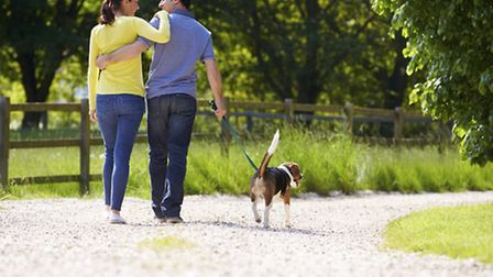 North Somerset has some great places to enjoy with your four-legged friends.