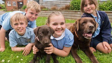 Old hand, school dog Rafi, with the new puppy, Zuri and pupils James, Tommy, Molly and Emily.