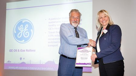 Cllr Elfan Ap Rees, deputy leader of North Somerset Council, presenting the silver award to Jane Gib