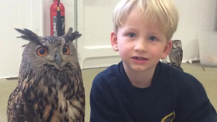 Wrington Primary School pupils enjoyed a visit from the Welsh Bird of Prey centre.