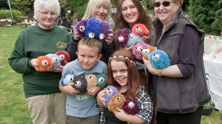 Organisers and volunteers selling toy and ornamental hedgehogs they have made.