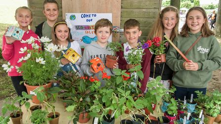 Pupils Eco Warriors club selling plants and bird boxes.