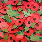 Help is needed for the Poppy Appeal