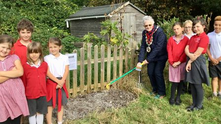 Pupils planting the seeds with Cllr Linda Little.