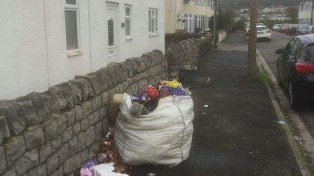 North Somerset Council hopes to find out who dumped the rubbish on the pavement.