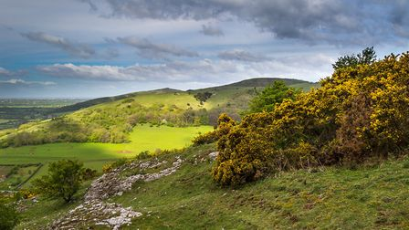 Mendip Hills. Picture: Simon Williams