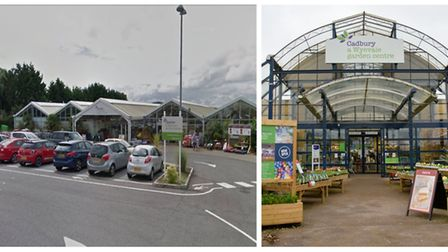 Garden centres in Cheddar and Cadbury in Congresbury are up for sale.