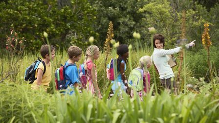 Guided nature walks get children appreciating nature.Picture: Getty Images/iStockphoto