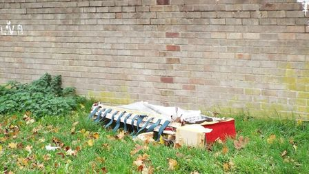Items were dumped between Queensway and Castle Batch. Picture: Denise Hunt