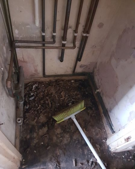 The conditions which the cats lived in. Picture: RSPCA