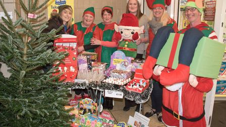 Proper Job charity fund raisers at Worle Christmas fair. Picture: MARK ATHERTON