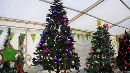 The Grand Pier donated a six-foot Christmas tree to Puxton Park's Festival Of Trees. Picture: Sub