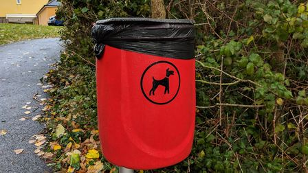 Overflowing dog poo bins in Hutton have been filled with cat litter and dirty nappies. Picture: Sam