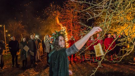 The queen putting toast in the trees at the wassail.