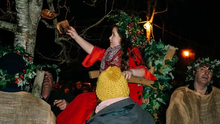 Wassail Queen Evie-Mae Collings is hanging burnt toast on the tree.Picture: Ollie Woolacott