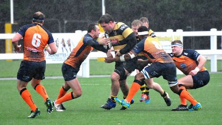 Hornets in action. Picture: Jeremy Long