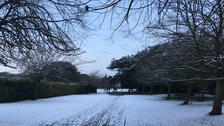 Clarence Park. Picture: Henry Woodsford