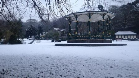 Grove Park in the snow. Picture: Tom Wright