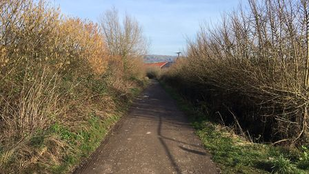 Holwell Lane in Cheddar.Picture: Cheddar Parish Council