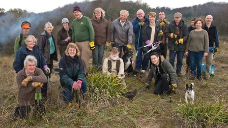 Sedgemoor conservation volunteers clearing blackthorn on Berrow Dunes. Picture: MARK ATHERTON
