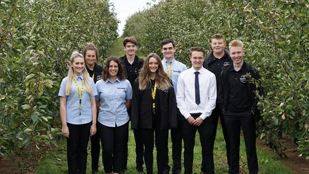 Thatchers' apprentices in one of the business' orchards.
