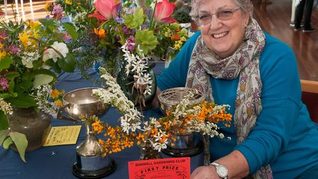 Margaret Purkiss with a selection of exhibits and prizes at Banwell Spring Show. Picture: MARK ATHE