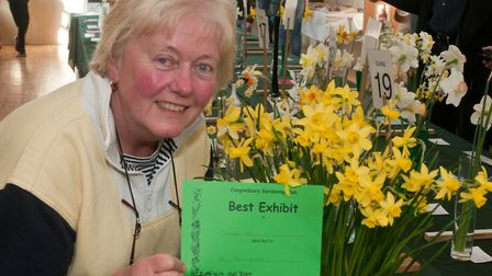 Jane Hare won a special award for her daffodils at Congresbury Gardening Club Spring show. Picture: