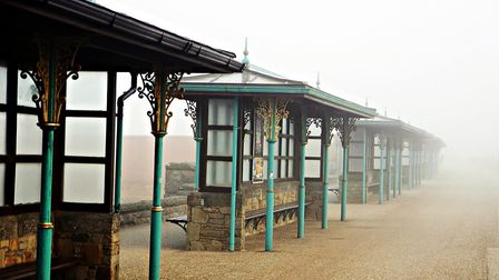 A picture from Terrys stroll around Weston on a misty day.Picture: Terry Kelly