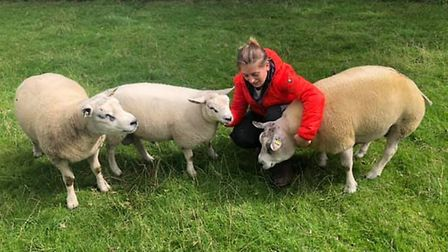Owner of Little Orchard Beltex Harriet Tibbs with her pedigree sheep.Picture: Little Orchard Beltex