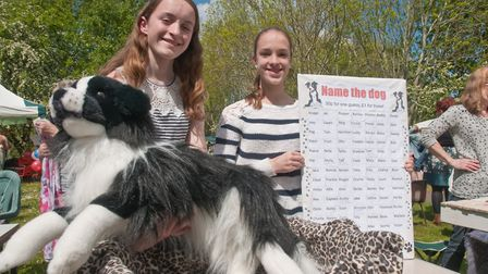 Emma and Lauren running a Name the Dog competition at Winscombe May Fair. Picture: MARK ATHERTON