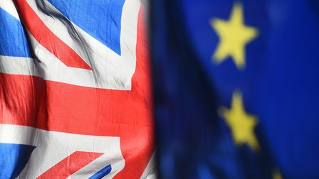 Readers had their say on a controversial online peititon to revoke Article 50 Picture; Press Associ