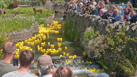 Cheddar Lions duck race. Picture: MARK ATHERTON