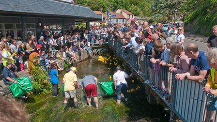 Photo finish at Cheddar Lions duck race. Picture: MARK ATHERTON