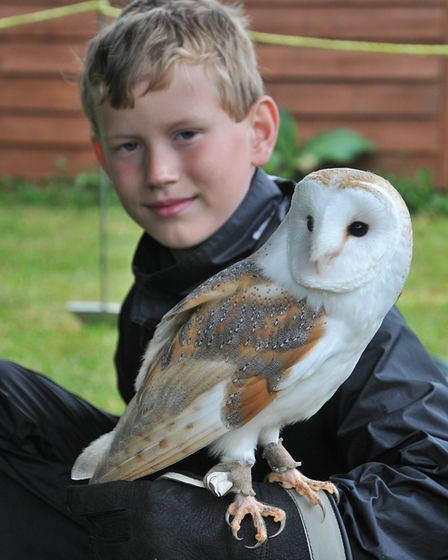 Bradley Notts 9 with Spice the Barn owlAvon Owls, in Banwell an host open day. SF26,05,19