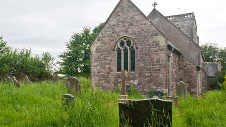 Church of the Holy Saviour, in Puxton, graveyard grass has not been cut this year. Picture: MARK A