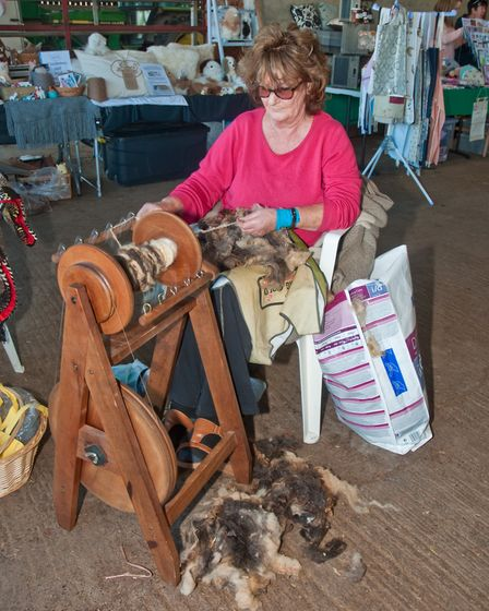 Hilary Ballard from the Avon Guild of Spinners at the Fleece Fair. Picture: MARK ATHERTON