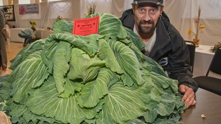 Stephen Lee's giant cabbage took center stage at Weston-super-Mare Horticultural Society Flower Show