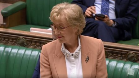 Andrea Leadsom in the House of Commons. Photograph: Parliament TV.