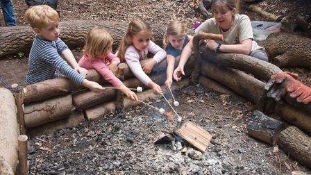 Louise Brogan toasting marshmallows with children at Play Wild CICs forest school.Picture: MARK ATHE