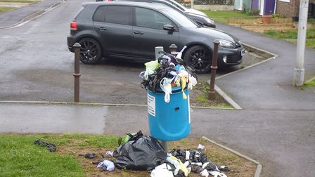 Wick St Lawrence will be without dog bins.